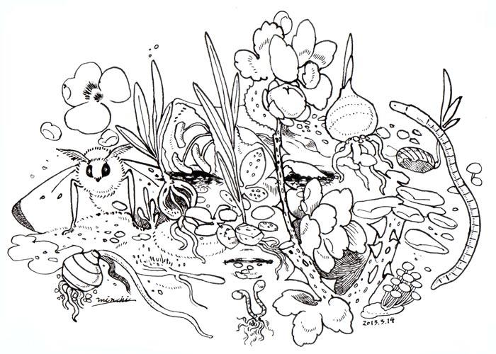 20130314flower